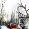 Santa Claus, reindeer, Finland