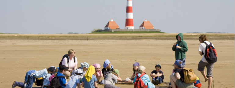 Experience nature on the Westerhever sands.