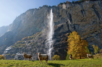 The Staubbach Falls are around 300 metres high.