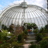 The Sumatran orangutans live underneath this glass dome.