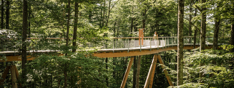 The tree-top walk Neckertal is about 500 meters long.