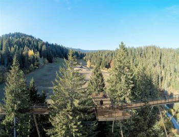 The tree top walk in Laax is about 1.5 kilometers long.