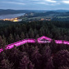 From the Treetop Walkway you can see all the way over the Bohemian Forest and to Lipno reservoir.