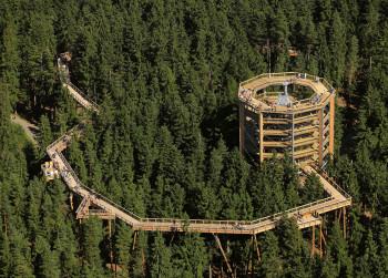 Treetop Walkway Lipno was the first canopy path in Czech Republic.