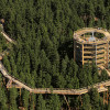 Treetop Walkway Lipno was the first canopy path in Czech Republic.