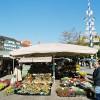 Viktualienmarkt in the heart of Munich.