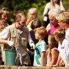 Visitors feeding penguins.