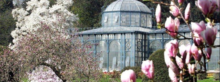 Glimpse at the historic greenhouse.
