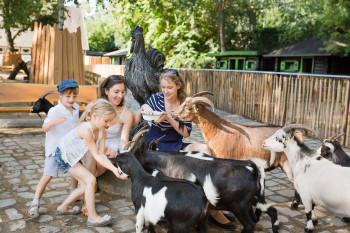 Fantastic for smaller kids: the petting zoo at Zoo Berlin.
