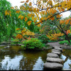 Founded in 1918, the Japanese Garden in Karlsruhe is one of the oldest of its kind in Germany.