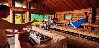 Panorama alpine sauna