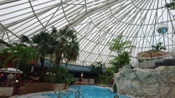 VitalOase boasts a great many palm trees.