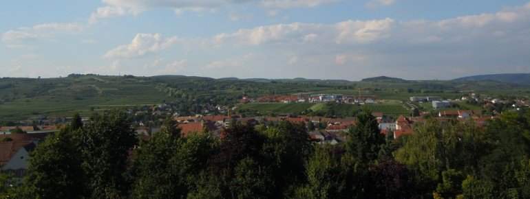 Der Ort Langenlois am Kamp