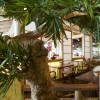 Das Restaurant im Innenbereich versorgt hungrige Gäste