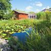 Im 5600 Quadratmeter großen Saunagarten mit Obstgarten und Naturteich kannst du dem Alltag entfliehen.