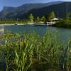 Das Naturbad umfasst eine Gesamtfläche von 2.200 Quadratmetern.