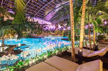 Lagune mit Poolbar im Palmenparadies der Thermen & Badewelt Sinsheim