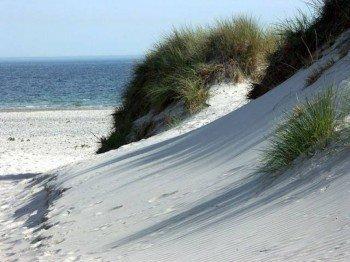 Feinster, weißer Sand in den Dünen am Nordstrand