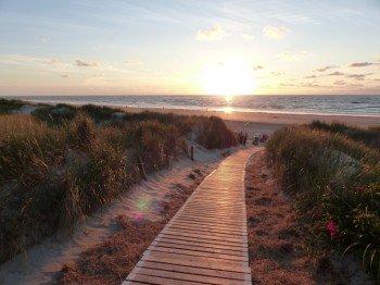 Über die Dünen erreicht man den Nordseestrand.