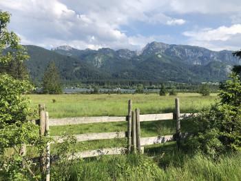 Der Bannwaldsee liegt in den Allgäuer Alpen.