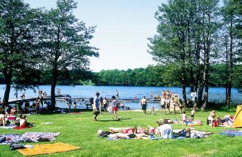 Blick von der Liegewiese an der Badestelle in Behlendorf auf den See.