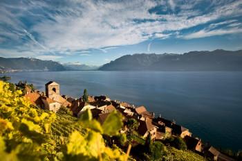 Die Weinterrassen von St. Saphorin (Lavaux) am Genfer See gehören zum UNESCO-Welterbe.