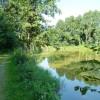 Für ein beschauliches Bad ist der Große Kiesweiher bei Weidenberg ebenso geeignet wie für ausgedehnte Schwimmrunden