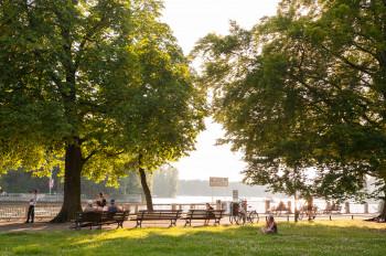 Blick vom Ufer auf den Müggelsee Friedrichshagen
