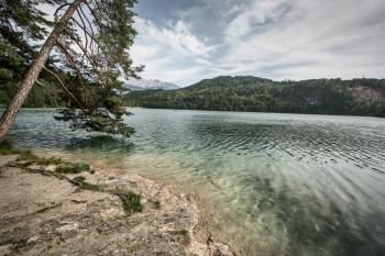 Kristallklar und eingebettet in den Brandenburger Alpen - der Hechtsee