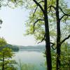 Idyllische Aussichten kannst du während einer Wandertour rund um den See genießen.