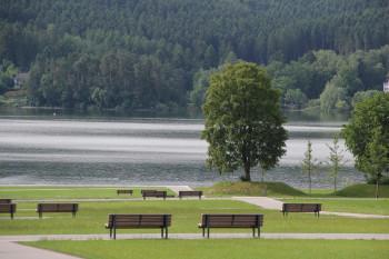 Am Möhnesee laden 40km Uferlänge zum Sonnenbaden, Wandern und Radfahren ein.