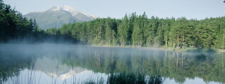 Der Möserer See befindet sich mitten im Naturschutzgebiet.