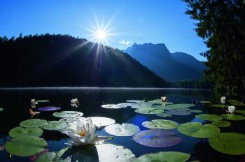 Der Piburger See liegt südlich von Oetz und ist von Wald umgeben.