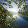 Der Plansee ist einer der saubersten Seen Tirols.