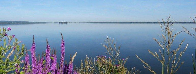 Bei klarem Wetter kannst du diesen Blick auf das komplette Steinhuder Meer genießen