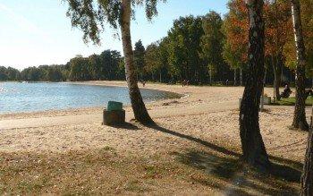 Birken spenden Schatten am Sandstrand des Tankumsees