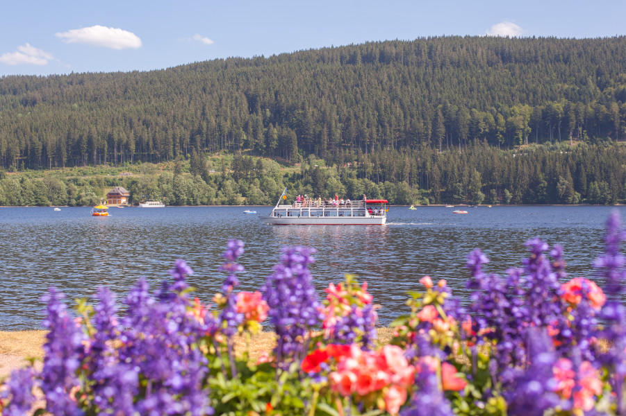 Badesee Titisee Im Schwarzwald Badeurlaub Wassertemperatur