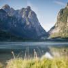 Ein Naturlehrpfad bietet Informationen über die Flora und Fauna rund um den See.