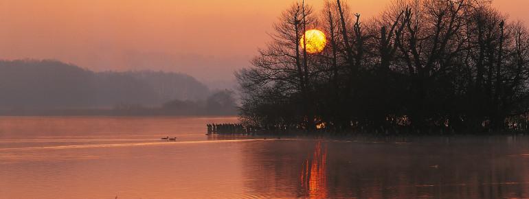 Sonnenuntergang am Tollensesee in Neubrandenburg.