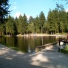 Außen um das Waldmoorbad Fleckl führt ein Rad- und Spazierweg
