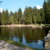 Panoramablick über das Waldmoorbad Fleckl und die angrenzende Liegefläche