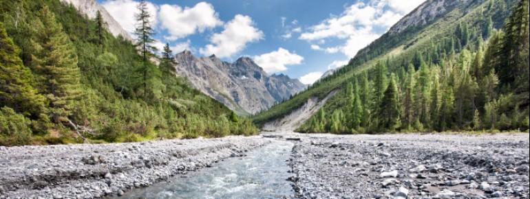 Im Schweizer Nationalpark