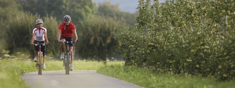 Radfahren zwischen Apfelbäumen