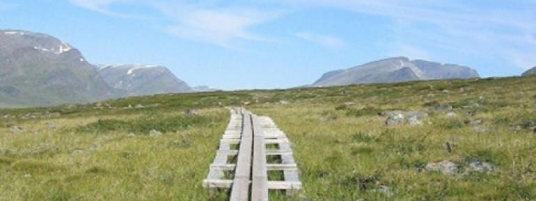 Wegabschnitt des bekannten Kungsleden-Wanderwegs im nordschwedischen Lappland