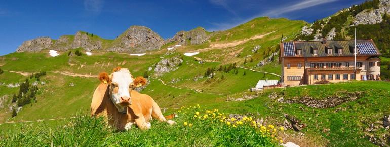 Urlaub in Bayern - Idylle unter weiß-blaumen Himmel